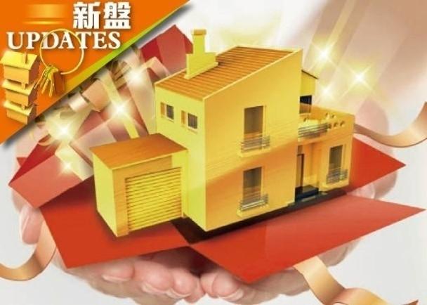 海璇新盤資訊-大型新盤開售掀起入票搶購潮