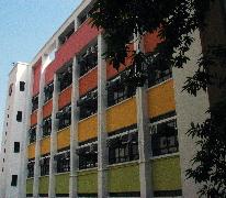 天主教總堂區學校 Catholic Mission School