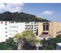 崇真小學暨幼稚園 Tsung Tsin Primary School And Kindergarten