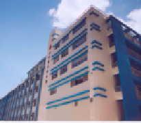 荃灣聖芳濟中學 St. Francis Xavier's School Tsuen Wan