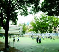 鄧鏡波學校 Tang King Po School