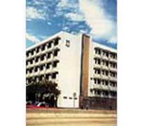 文理書院(九龍) Cognitio College (Kowloon)