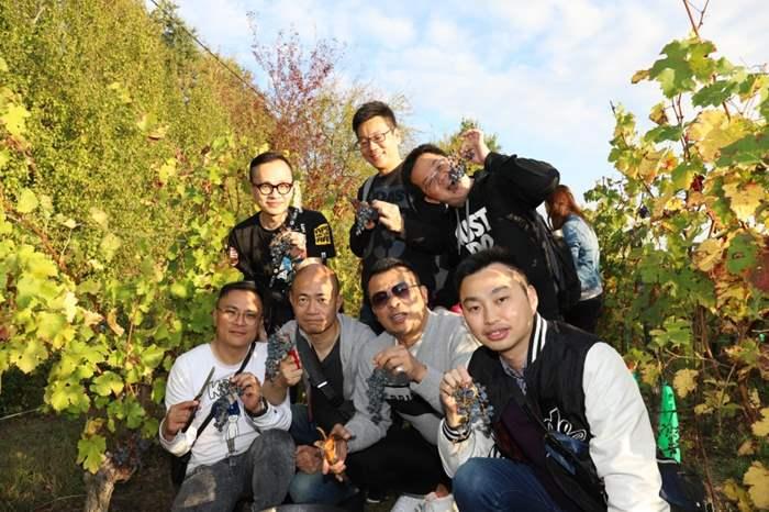 由於有良好的土壤結構,加上海洋性氣候,讓波爾多種植釀酒葡萄有得天獨厚的優勢。精英們都十分享受於酒莊採葡萄的難得體驗。