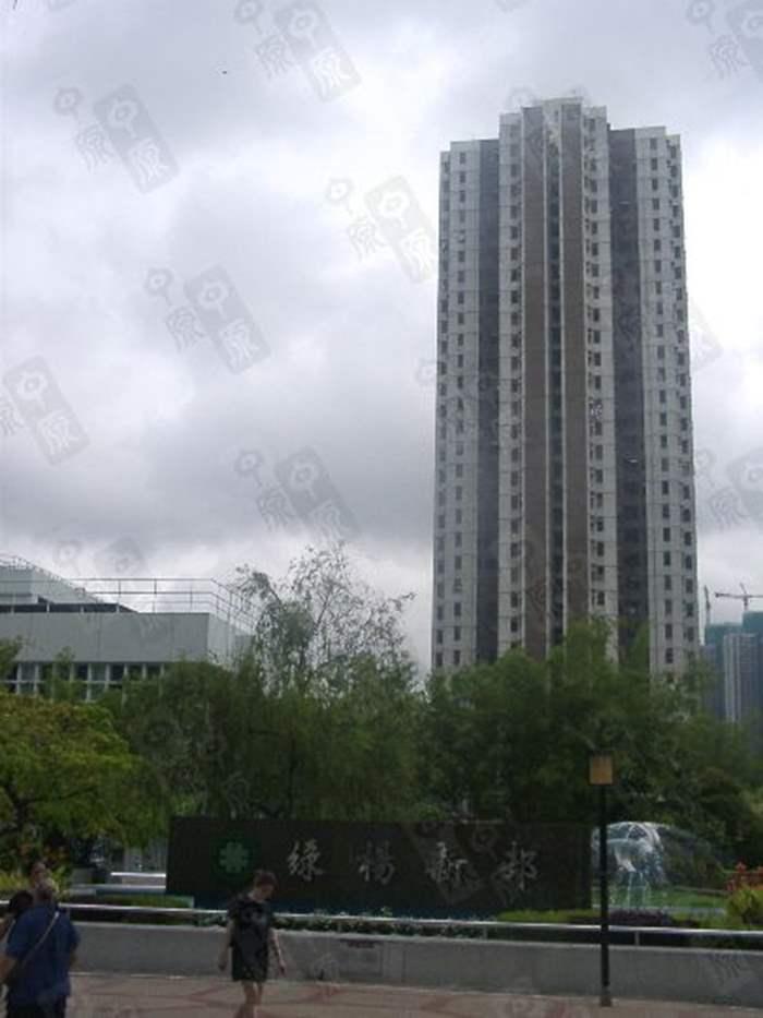 綠楊新村淡市仍錄「摸貨」獲利個案 L座高層206.8萬元易手