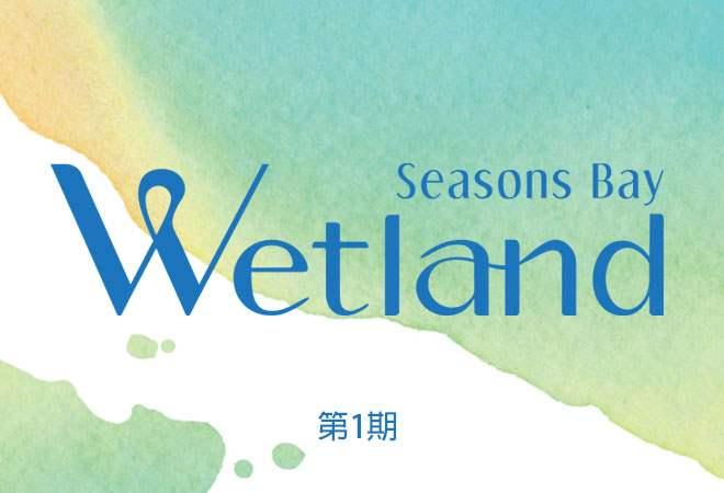 Wetland Seasons Bay Phase 1